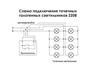 shemy_tigra_vyshivka_6694_100