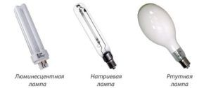 Некоторые лампы используемые при освещении теплиц